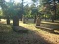 Vojničko groblje u Šumaricama.JPG