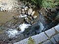 Vylet na Ostry, Sumava - 9 cervenec 2011 211.jpg