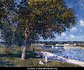 Walnut-Tree-in-a-Thomery-Field-large.jpg