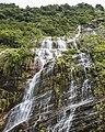 Waterfall- Annapurna Base Camp Trek-3109.jpg
