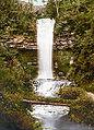 Waterfall Ireland Photochrome 09919v.jpg