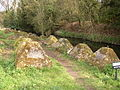 Waverley Abbey Tank Traps - geograph.org.uk - 42659.jpg