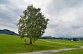 Wayside shrine 2 in Berg, Henndorf 01.jpg