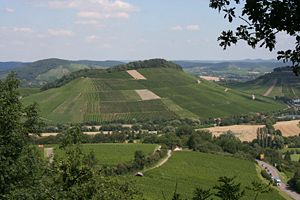 Weinsberg - View of the Schemelsberg   from Heilbronn's Wartberg.   Burgberg on the right.