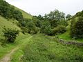 Wetton, valley SE of Wetton Mill - geograph.org.uk - 524085.jpg