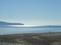 Photo of beach in Puget Sound