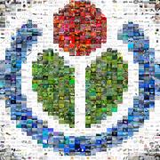 Logo de Wikimedia créé par une mosaïque d'images de Commons.