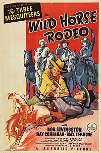 Wild Horse Rodeo
