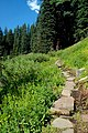 Wildflower Trail (Klamath County, Oregon scenic images) (klaD0156).jpg