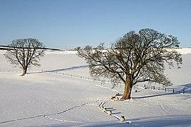 Winter farmland near Greenhead (geograph 2187452).jpg