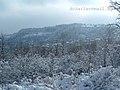 Winter in Kumani.jpg