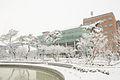 Winter in kit.jpg