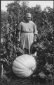 Woman with large pumpkin at Cass Lake - NARA - 285291.tif