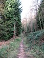 Woodland path, Hood Hill - geograph.org.uk - 683089.jpg
