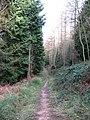 Woodland path, Hood Hill - geograph.org.uk - 683089.jpg