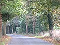 Woodlands Road, Lower Shiplake - geograph.org.uk - 66304.jpg