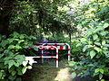 Wuppersteg Papiermühle 01 ies.jpg