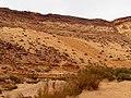 Yamin Gulch, Negev, Israel נחל ימין, הנגב, ישראל - panoramio (5).jpg