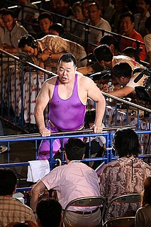 Yoji Anjo Australian professional wrestler and mixed martial arts fighter