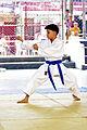Young karateka performing Kūsankū-shō (Karate kata).jpg