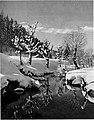 Zimski motiv 1929.jpg