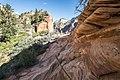 Zion National Park (15327810992).jpg