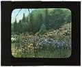 """Killenworth,"" George Dupont Pratt house, Glen Cove, New York. LOC 7536005362.jpg"