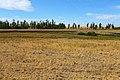 Балка Кишкентайсай. В западном направлении - panoramio.jpg