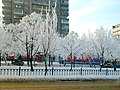Зима 2011, Фото сделано телефоном. - panoramio - mramorn.jpg