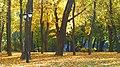 Маріїнський парк, довга тепла осінь.JPG
