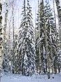 Недалеко от Алексеевского - panoramio (4).jpg