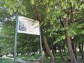 Радивилівський дендропарк.jpg