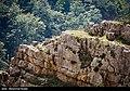 غار باستانی دربند رشی - گیلان 06.jpg