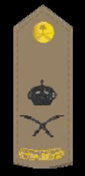 Abdulrahman bin Saad al-Shahrani - Image: لواء