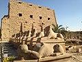 معبد الكرنك الاقصر.jpg