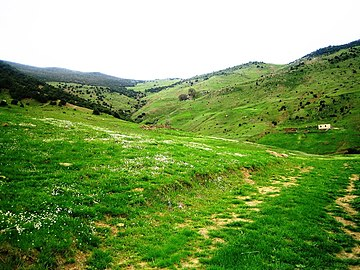 منطقة بوجمل من مدينة سور الغزلان بالجزائر.jpg