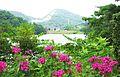 みやま公園 赤松池 - panoramio.jpg