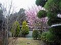 指月庵 Yubitsuki-an - panoramio.jpg