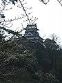 犬山城 - panoramio - z tanuki.jpg