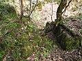 金屋石採掘跡の近くに残る古い採掘跡の入口.JPG
