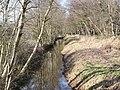 -2021-01-31 Field Drain, Bransmeadow Carr, Ridlington, Norfolk.jpg