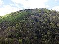 003 Muntanya de Sant Antoni (Camprodon).JPG