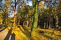 038 - Wien Zentralfriedhof 2015 (23231248035).jpg