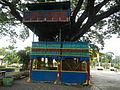 07359jfBagumbayan Roads Municipal Park Halls Victoria Llanera Nueva Ecijafvf 17.JPG