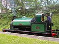 07I07I2019 Tanfield Railway F2.jpg