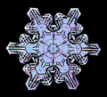 08 snowflake colorized early experimental digital photography by Rick Doble.png