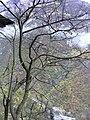 1000 cham Chalus road - panoramio.jpg
