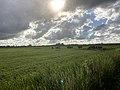 1297.Groningen.Evert.Harm.WoltersWeg.Weide.Kerkje.Van.Harkema.Fransum.Hardeweer.Beswerd.jpg