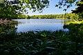 140829 Yonko of Shiretoko Goko Lakes Hokkaido Japan02bs.jpg