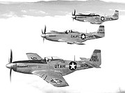 144th Fighter Group - 3 F-51 flight